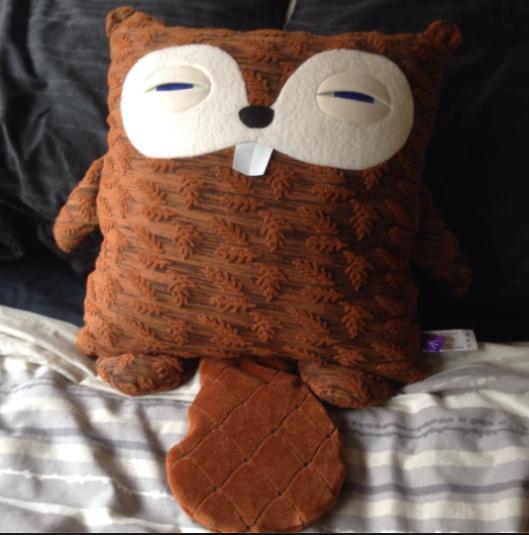 Beaver Pillow