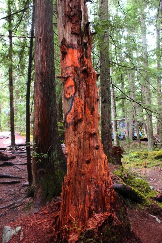 Burnt Orange Tree