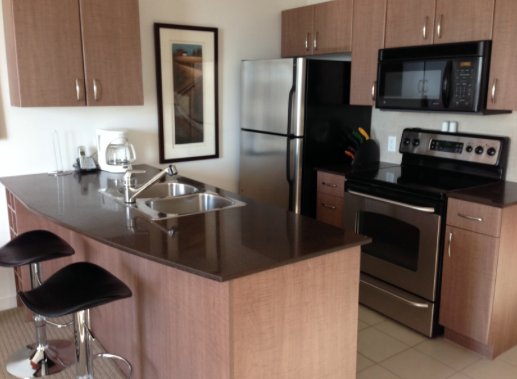 Example of kitchen in Downtown Apartment Vancouver