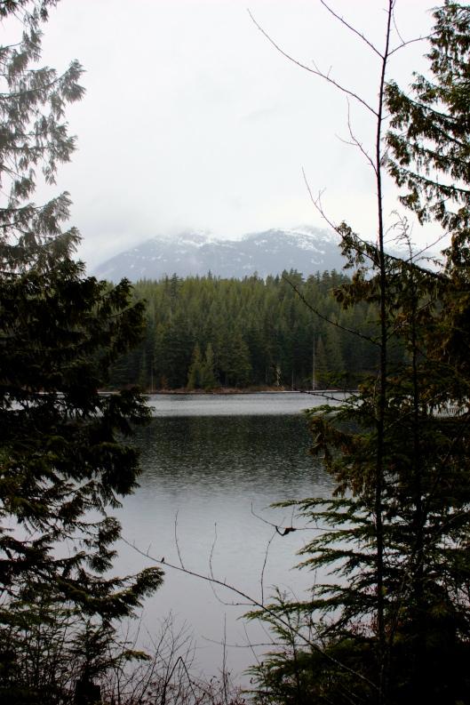 Mountain Whistler