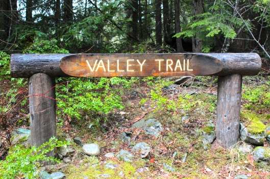 Valley Trail