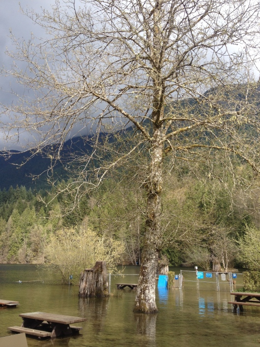Buntzen Lake_Greater Vancouver